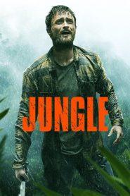 Jungle