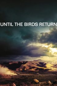 Until The Birds Return
