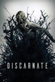 Discarnate 2018