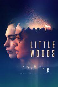 Little Woods 2019
