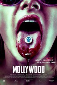 Mollywood 2019