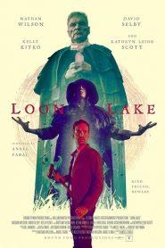 Loon Lake 2019