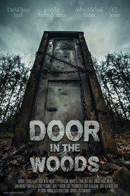 Door in the Woods 2019